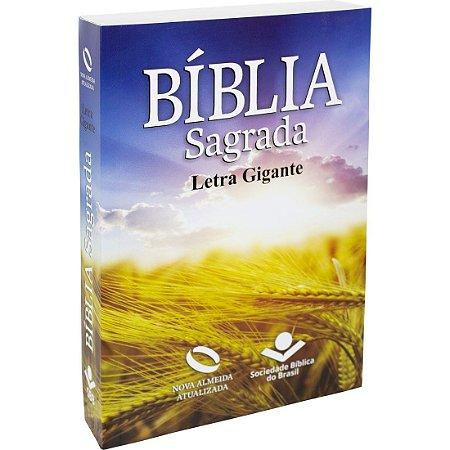 BÍBLIA NAA GIGANTE  BROCHURA TRIGO