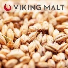 MALTE MUNICH DARK - VIKING