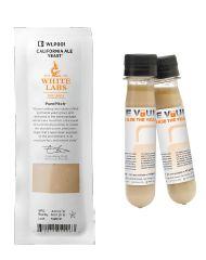 WLP007 | Dry English Ale Yeast - WHITELABS