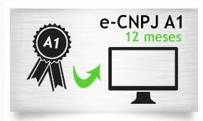 E-CNPJ A1 - CERTIFICADO 12 MESES