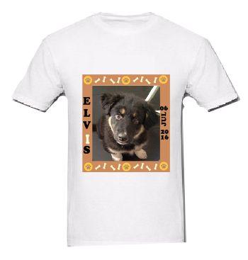 Camiseta do seu Pet
