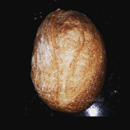 Pão 100% INTEGRAL com Fermento Natural