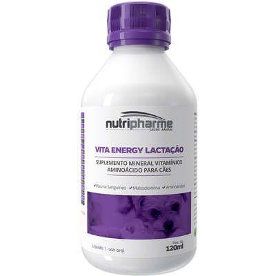 Suplemento Vitamínico Aminoácido Vitaenergy Lactação