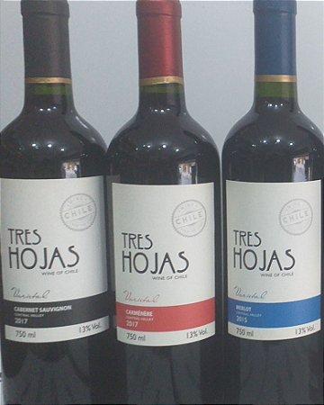 Vinhos Chilenos kit 3 unidades R$ 90,00 reais