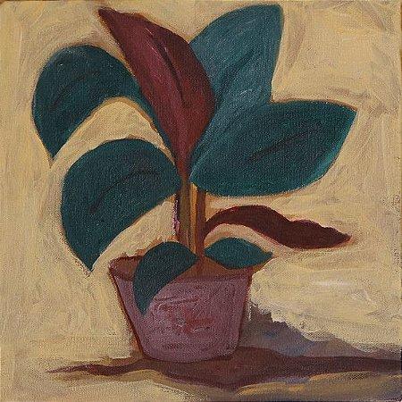 Vaso de planta 2