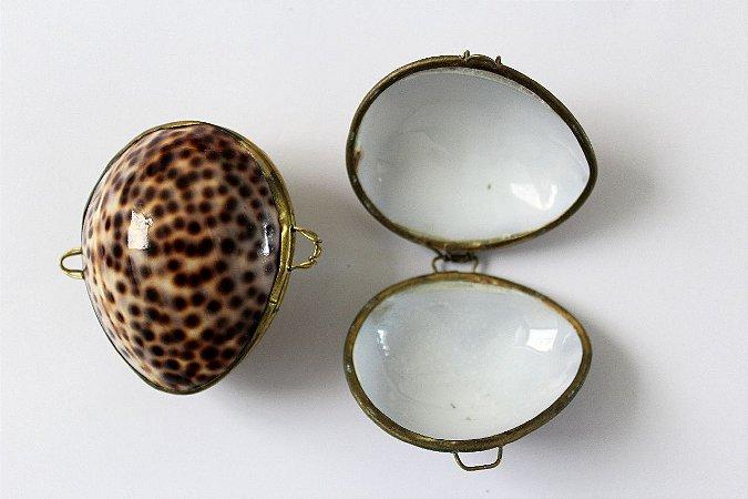 cypraea tigris  coin purse 7 cm - unid