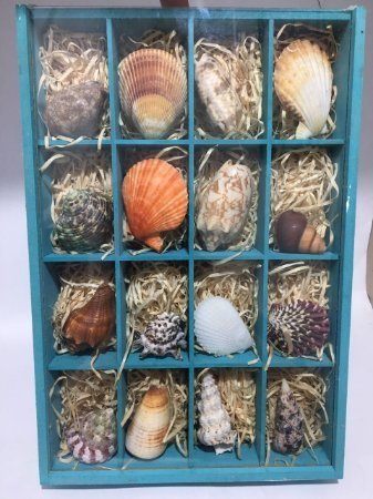 box with mix shells 4x4 - unid