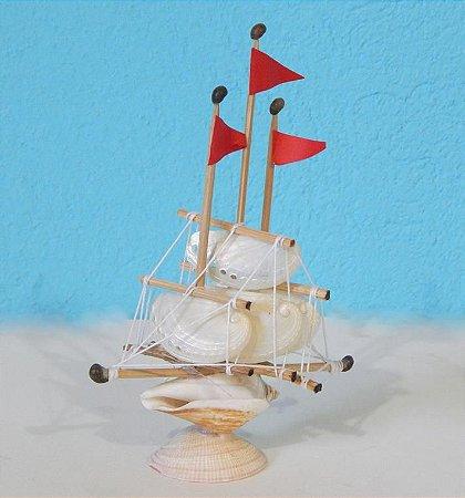 sail boat abalone 15 cm -  unid