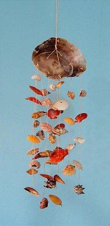 placuna chime w/ mix shells - unid