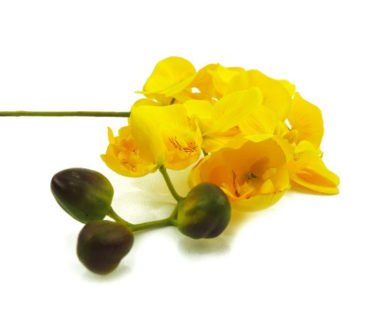 Haste de Orquídea 10cm x 95cm Premium Amarela