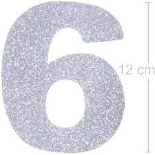 NUMERO ''6'' EM EVA BRILHO PRATA