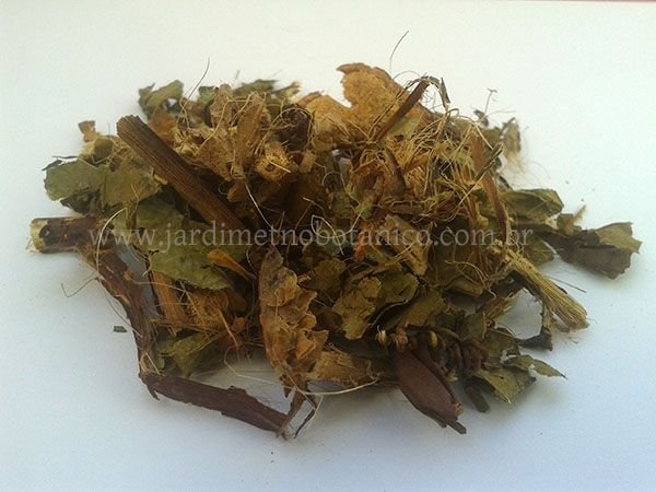 Maracujá (Passiflora alata) - Folhagem triturada