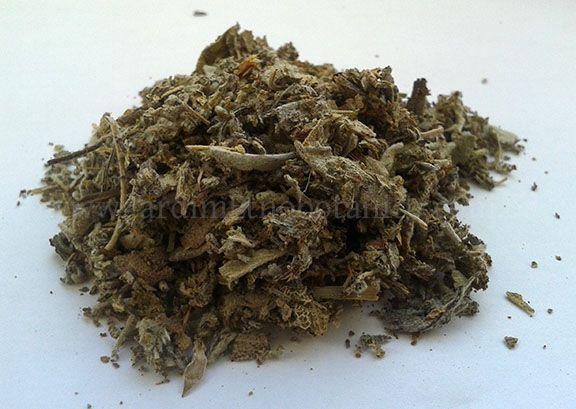 Sálvia (Salvia officinalis) - Folhas trituradas