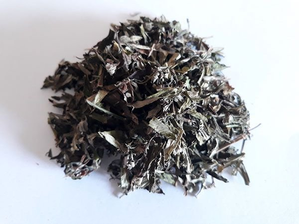 Artemísia (Artemisia vulgaris) - Folhagem triturada