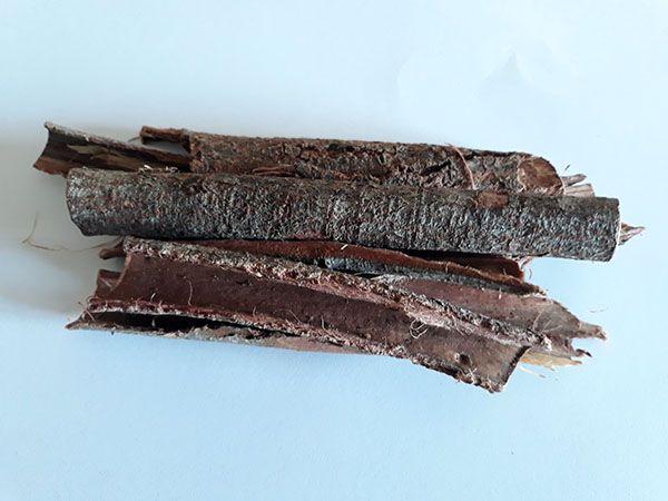 Jurema preta (Mimosa hostilis/tenuiflora) - Cascas do tronco