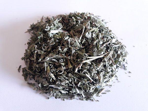 Absinto (Artemisia absinthium) - Folhagem triturada