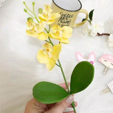 Galho de Mini Orquídea
