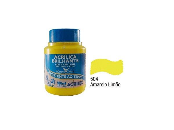 Acrilex - Tinta Acrilica Brilhante 100ml - Amarelo Limão (504)
