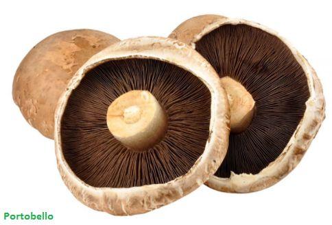 Cogumelo Portobello Bandeja 200g (Chegada 26.10.21)