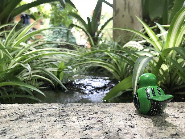 Patinho verde
