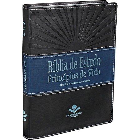 BÍBLIA DE ESTUDO PRINCÍPIOS DE VIDA   RA
