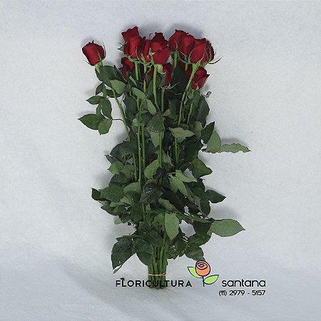 Rosas Vermelhas Atacado