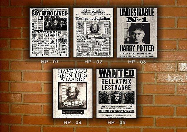 Placa Decorativa Vintage Retro Harry Potter