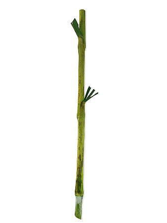 BRS Capiaçu - Varas de 50 cm - mín. 1000 varas