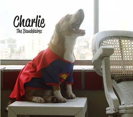 The Baudelaires - Charlie (cd digipack)