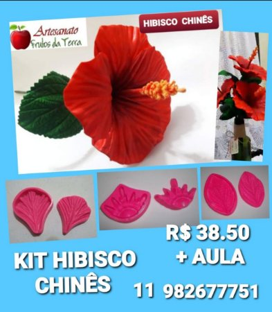 Kit flores Hibisco chinês