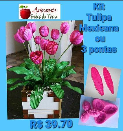 Kit frisadores Tulipa Mexicana ou três pontas