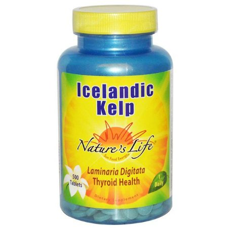 Icelandic KELP Nature's Life 500 Tablets