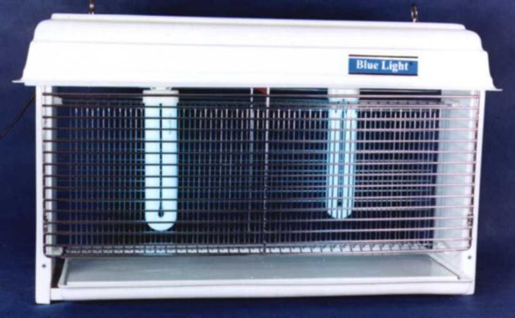 Eliminador De Insetos Blue LIGHT BL 60