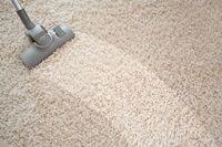 Limpa Carpete e Tapete  faz 50 litros