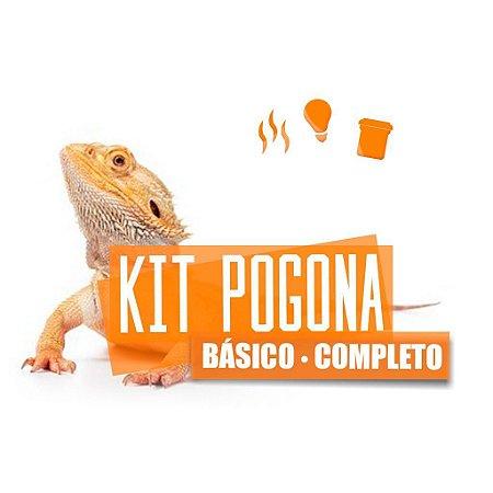 Kit Completo Para Pogona Bearded Dragon