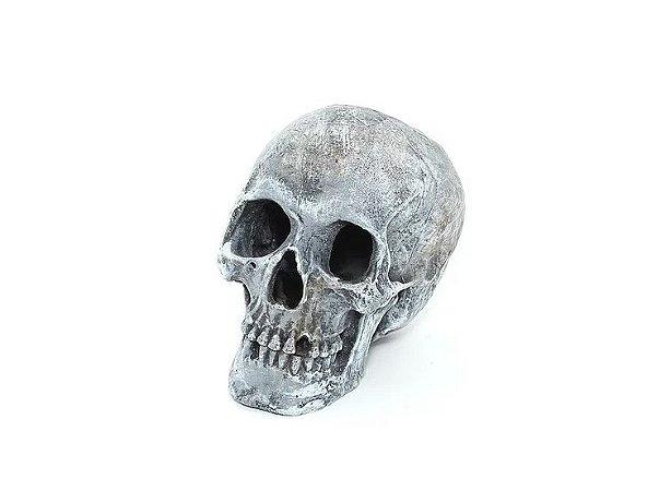 Toca Em Resina Cranio Para Pequenos Répteis E Aracnídeos