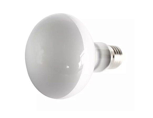 Lampada de Aquecimento UVA Focal Para Répteis Nomoy Pet 75w 110v