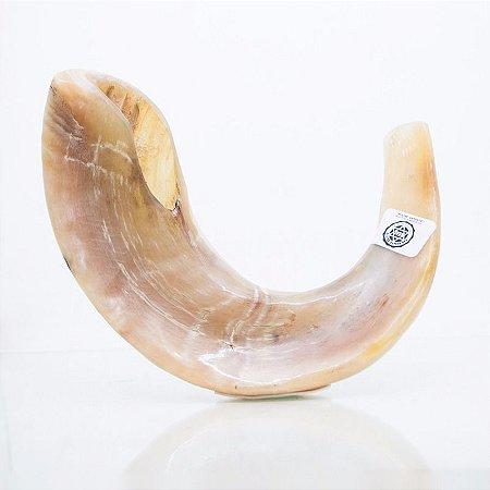 Shofar de Carneiro de 35 a 40 cm - C3