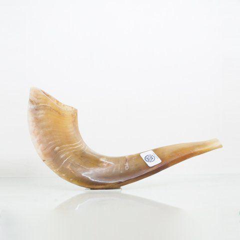 Shofar de Carneiro de 30 cm - D2