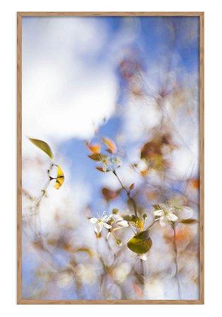 Primavera Suave com Moldura 50 x 75 cm
