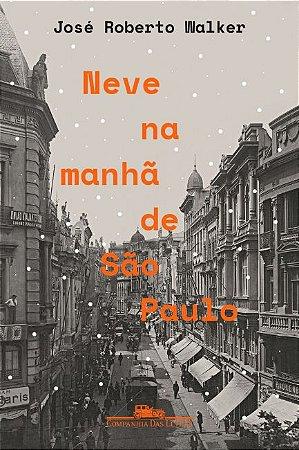 Neve na manhã de São Paulo