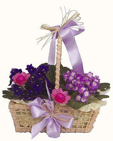 Cesta de Violetas e Chocolates