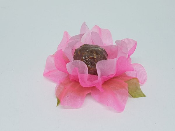Forminha rosa Gerbera