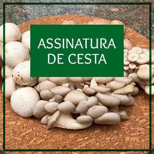 Assinatura de cesta de cogumelos