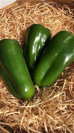 Pimentão verde orgânico - 500g