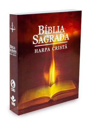 Bíblia Grande HP Cristã Letra GD Luz