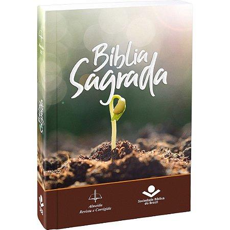 Bíblia de Evangelização / Infantil ICM - Pequena - Verde - REVISTA E CORRIGIDA