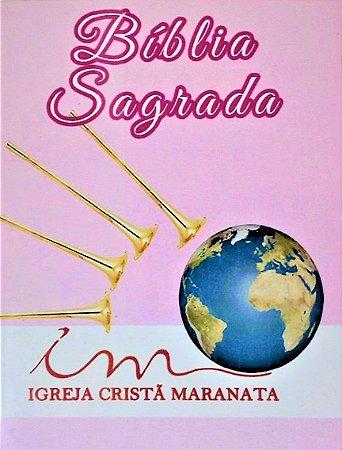 Bíblia de Evangelização ICM - Pequena - Capa Dura - Rosa Claro