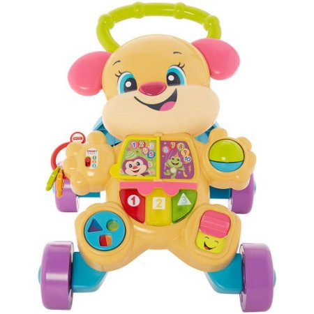 FISHER-PRICE IRMA DO CACHORRRINHO QUE ANDA FRD02 - MATTEL