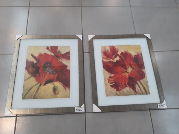 Quadros flores (par)